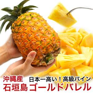 ゴールドバレル パイナップル 沖縄 石垣島産 高級 1.5kg前後 【安心保証付き】