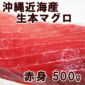 沖縄産養殖☆本マグロ!極上の赤身500g