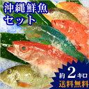 【送料無料】 おまかせ沖縄鮮魚セット2kg(2〜3種類)