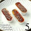 【期間限定】 カカオダスト チーズケーキ 5個入り 濃厚 カマンベールチーズケーキ トッピング カカオニブ カラメルソ…