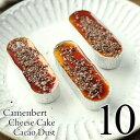【期間限定】 カカオダスト チーズケーキ 10個入り 濃厚 カマンベールチーズケーキ トッピング カカオニブ カラメルソ…
