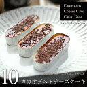 カカオダストチーズケーキ 10個 (カマンベールチーズケーキ・10個、トッピング・5個)濃厚 カカオニブ カラメルソー…