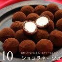 バレンタイン チョコ チョコレート ギフト ショコラネージュ 10個入り 生チョコ 生トリュフ 義理チョコ 友チョコ 本命…
