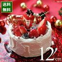 クリスマスケーキ 予約 2019 ホワイトクリスマス 12cm(4号) (目安・2-4名分) クリスマス パーティー いちご ケーキ 数量限定 飾り キャラクター 2人 ピック かわいい おしゃれ 送料無料 カトルフィユ 広島
