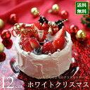 クリスマスケーキ 予約 2020 ホワイトクリスマス 12cm(4号) (目安・2-4名分) クリスマス パーティー いちご ケーキ 数量限定 飾り キャラクター 2人 ピック かわいい おしゃれ 送料無料 カトルフィユ 広島