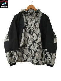 THE NORTH FACE PURPLE LABEL Paisley Print Mountain Parka S【中古】
