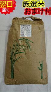【令和2年産 新米】静岡県森町 堀内農場特別栽培米(減農薬7割減、化学肥料9割減)コシヒカリ★玄米30kg(精米無料)※北海道、沖縄、離島は発送見合わせております。