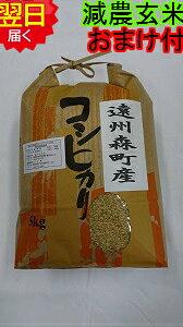 【令和元年産 】静岡県森町 堀内農場特別栽培米(減農薬7割減、化学肥料9割減)コシヒカリ★玄米5kg送料無料※北海道、沖縄は発送見合わせております。