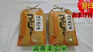 【令和元年産 】静岡県森町 堀内農場特別栽培米(減農薬7割減、化学肥料9割減)コシヒカリ★玄米10kg送料無料※北海道は別途送料¥¥500沖縄一部離島は¥¥1500が掛かります。