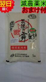 【30年産 】千葉県匝瑳市産 特別栽培米(減農薬5割減、化学肥料5割減)匝瑳の舞プレミアム☆白米5kg送料無料※北海道は別途送料\500沖縄一部離島は\1500が掛かります。