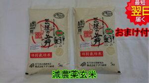 【令和2年産】千葉県匝瑳市産 特別栽培米(減農薬5割減、化学肥料5割減)匝瑳の舞プレミアム★玄米10kg(5kg袋×2)送料無料※北海道、沖縄は発送見合わせております。
