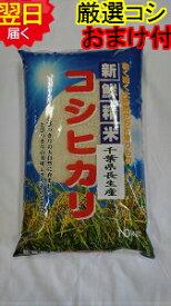 【令和2年産】千葉県産 長生産 コシヒカリ ☆白米10kg送料無料※※北海道、沖縄は発送見合わせております。