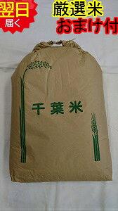 【令和3年産 新米】千葉県産 長生、茂原産 コシヒカリ ★玄米30kg(もしくは精米無料)送料無料※北海道、沖縄、離島は発送見合わせております。