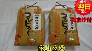 【令和元年産】千葉県産 長生産 コシヒカリ ★玄米10kg送料無料※北海道、沖縄は発送見合わせております。