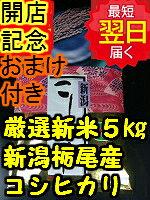 【新米】新潟県栃尾産コシヒカリ5kg送料無料※北海道・沖縄一部離島は別途送料500円が掛かります。