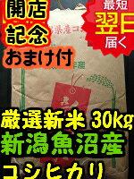 【29年産 新米】新潟県魚沼産コシヒカリ(特別栽培米、減農薬米)★玄米30kg(精米無料27kg)送料無料※北海道は別途送料\500沖縄一部離島は\1500が掛かります。
