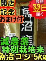 【29年産 新米】新潟県魚沼産コシヒカリ(特別栽培米、減農薬米)☆白米5kg送料無料※北海道は別途送料\500沖縄一部離島は\1500が掛かります。
