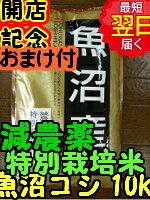 【新米】新潟県魚沼産コシヒカリ10kg送料無料※北海道・沖縄一部離島は別途送料500円が掛かります。
