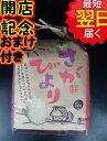【28年産 新米】佐賀県白石地区産さがびより☆白米5kg送料無料※北海道は別途送料\500沖縄一部離島は\1000が掛かります。