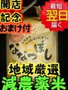 【28年産】北海道 厳選 ななつぼし☆白米5kg送料無料※北海道は別途送料\500沖縄一部離島は\1000がかかります。