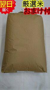 【令和2年産】静岡県産 厳選 ミルキークイーン玄米30kg(もしくは精米無料)送料無料※北海道、沖縄、離島は発送見合わせております。
