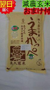 【令和元年産】茨城奥久慈 うまかっぺコシヒカリ★玄米5kg特別栽培米、減農薬米送料無料※北海道、沖縄は発送見合わせております。