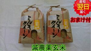 【令和元年産】山形県産ミルキークイーン★玄米10kg特別栽培米送料無料※北海道、沖縄は発送見合わせております。