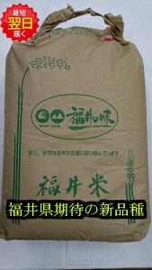 【令和元産 】福井県産 いちほまれ 玄米 30kg(もしくは精米無料) 送料無料 ※北海道、沖縄は発送見合わせております。