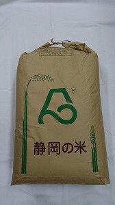 【令和3年産 新米】静岡県産 にこまる☆玄米30kg(もしくは精米無料)送料無料_※北海道、沖縄、離島は発送見合わせております。