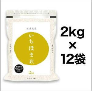 新米 令和3年(2021年) 福井県産 いちほまれ<4年連続 特A評価> 白米 24kg (2kg×12袋)【送料無料】【米袋は真空包装】【即日出荷】