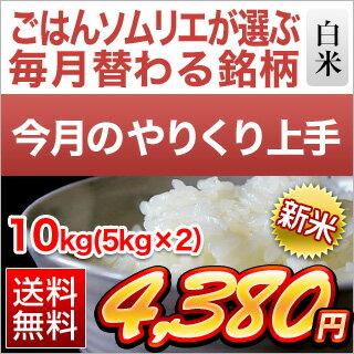 【11月のやりくり上手】栃木県産 とちぎの星 ( 10kg | 5kg×2袋 )【 送料無料 ・ 30年度産新米/ お米】【白米】