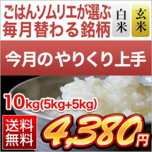 【白米・玄米セット】山形県産 山形95号 10kg(5kg×2袋)【送料無料・令和元年産】 【4月のやりくり上手】【白米・玄米】