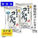 【期間限定20%OFF】 無洗米 米 令和2年産 【新潟県産 コシヒカリ】 10kg (10キロ) 5kg ×2袋 令和2年 お米 おこめ 白…