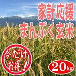 【送料無料】【玄米】【業務用】【30kg】【新米】???30キロ