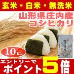 【米】【10k】【送料無料】「山形県24年産コシヒカリ」10kg(5キロ×2袋)