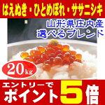 【新米】【送料無料】【お試し】【数量限定】「ササニシキ」2キロ