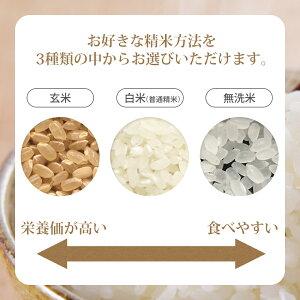 無洗米白米玄米を選べます