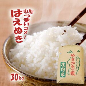 山形 令和2年産 新米 はえぬき 30kg 送料無料 無洗米/白米/玄米 【精米後約27kg】
