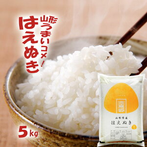 無洗米 5kg 送料無料 山形 令和2年産 新米 はえぬき 無洗米/白米/玄米 5キロ おこめ コメ 【別途送料加算地域あり】