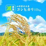 減農薬コシヒカリ10kg