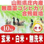 無農薬コシヒカリ合鴨農法10kg