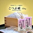 無洗米 送料無料 10kg こつぶ姫 5kg袋×2ケ 【別途送料加算地域あり】