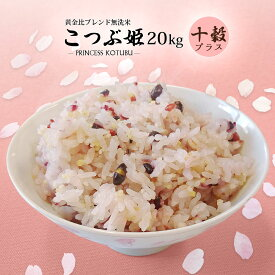 無洗米 送料無料 20kg こつぶ姫 5kg袋×4ケ 十穀4袋おまけ付き 【別途送料加算地域あり】