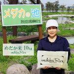 山形県産めだか米はえぬき5kg