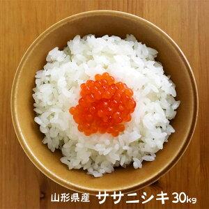 ササニシキ 30kg 山形 新米 令和元年産 無洗米/白米/玄米選べます (精米後約27kg) 米 おこめ コメ 30キロ