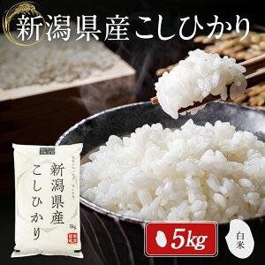 米 5kg 新潟県産 こしひかり 令和2年度産 お米 5キロ 白米 精米 産地直送 送料無料 コシヒカリ