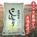 【新米】【送料無料(一部地域を除く)】新潟県産コシヒカリ 5kg袋 〔29年産〕 新潟米のスタンダード!新潟から産…