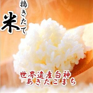 令和元年産 米 30kg 送料無料 秋田県産 あきたこまち 玄米(10kg×3袋) 一等米 お米 白米 27kg お祝い 御贈答