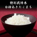 令和元年産 米 30kg 送料無料 秋田県産 減農薬 特別栽培米 あきたこまち 玄米 30kg(10kg×3袋)  一等米 お米 白米 27kg お祝い 御贈答