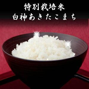 令和元年産  玄米 30kg 送料無料 秋田県産 減農薬 特別栽培米 あきたこまち 米 30kg(10kg×3袋)一等米 お米 白米 27kg お祝い 御贈答